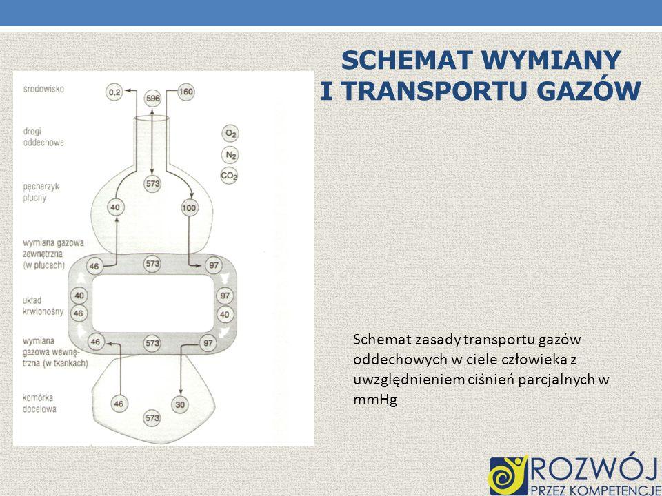 Schemat wymiany i transportu gazów