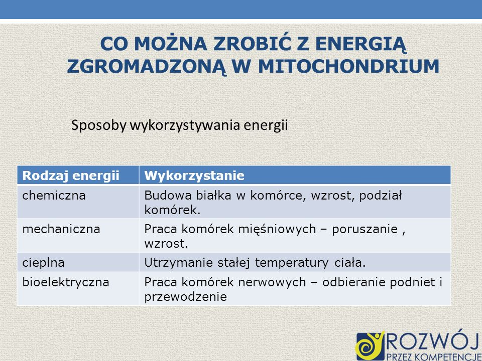 Co można zrobić z energią zgromadzoną w mitochondrium