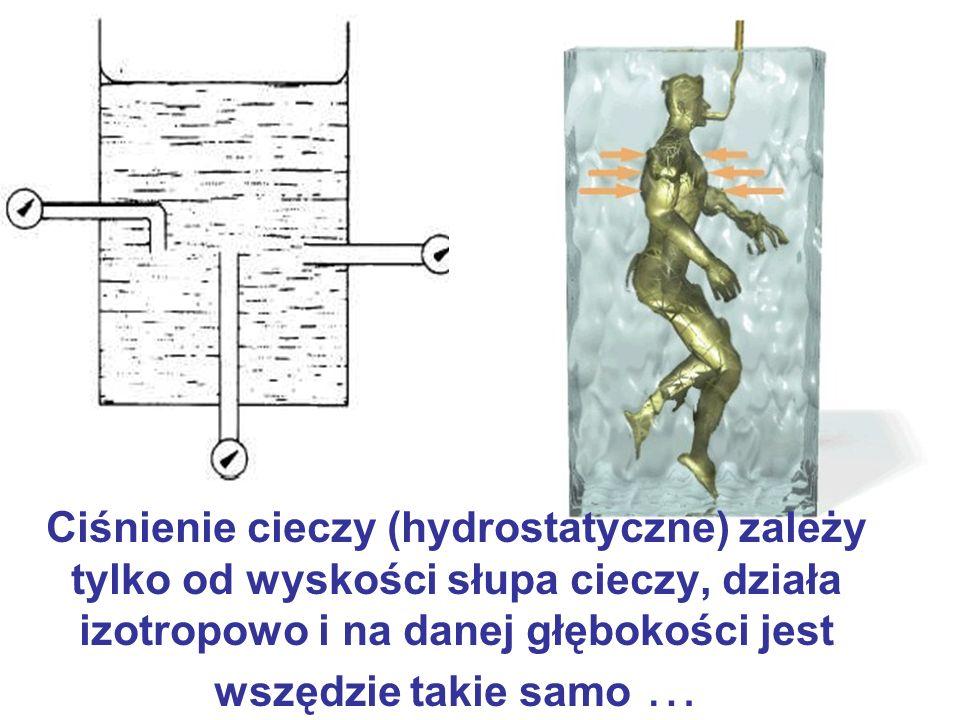 Ciśnienie cieczy (hydrostatyczne) zależy tylko od wyskości słupa cieczy, działa izotropowo i na danej głębokości jest wszędzie takie samo …