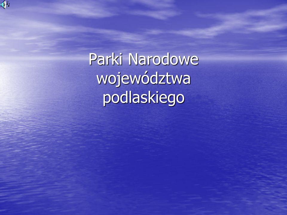 Parki Narodowe województwa podlaskiego