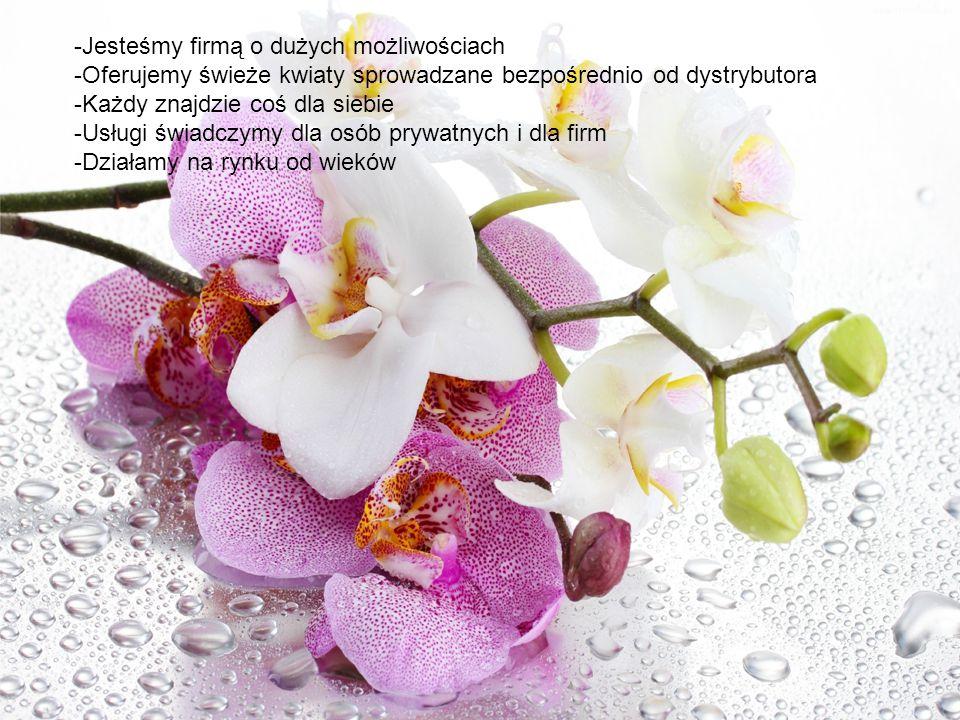 -Jesteśmy firmą o dużych możliwościach -Oferujemy świeże kwiaty sprowadzane bezpośrednio od dystrybutora -Każdy znajdzie coś dla siebie -Usługi świadczymy dla osób prywatnych i dla firm -Działamy na rynku od wieków