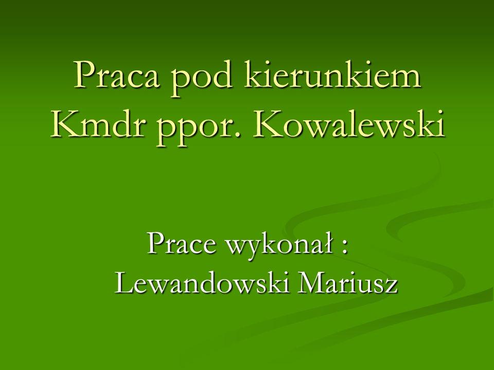 Praca pod kierunkiem Kmdr ppor. Kowalewski