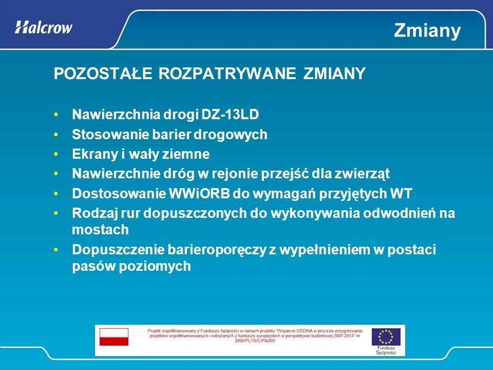 Zmiany POZOSTAŁE ROZPATRYWANE ZMIANY Nawierzchnia drogi DZ-13LD