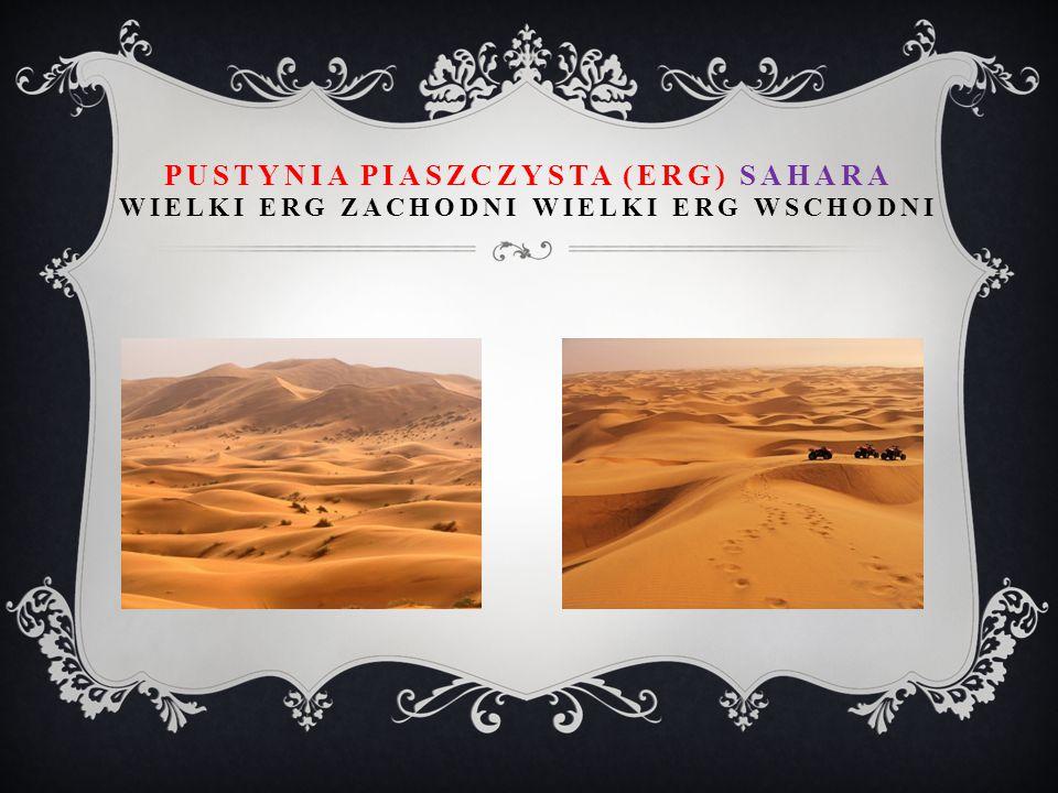 Pustynia piaszczysta (erg) Sahara wielki erg zachodni wielki erg wschodni