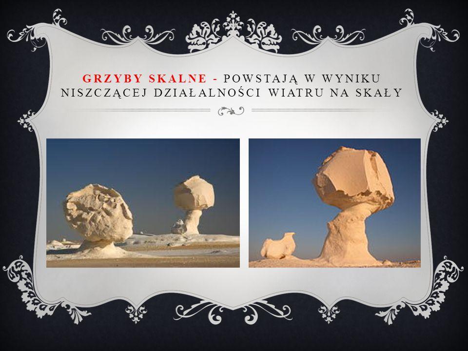 Grzyby skalne - powstają w wyniku niszczącej działalności wiatru na skały