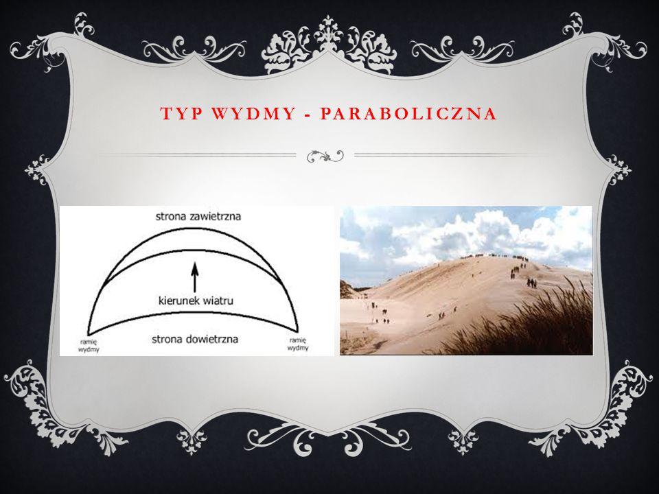 Typ wydmy - paraboliczna