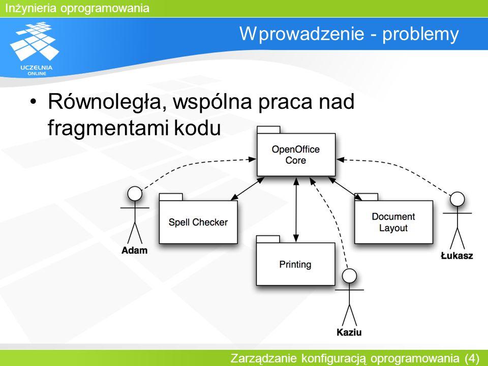 Wprowadzenie - problemy