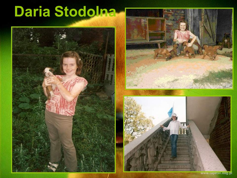 Daria Stodolna