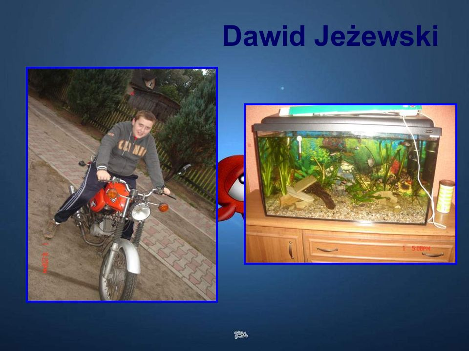Dawid Jeżewski