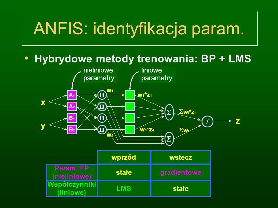 ANFIS: identyfikacja param.