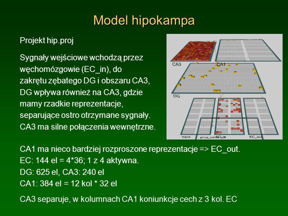 Model hipokampa Projekt hip.proj Sygnały wejściowe wchodzą przez