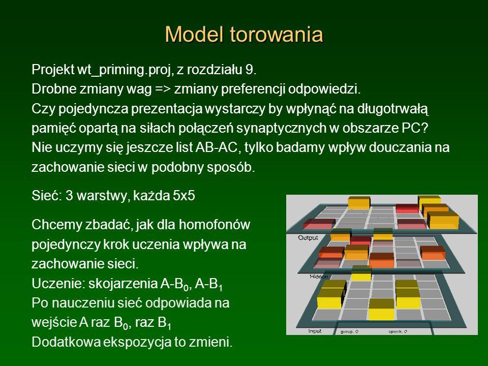 Model torowania Projekt wt_priming.proj, z rozdziału 9.