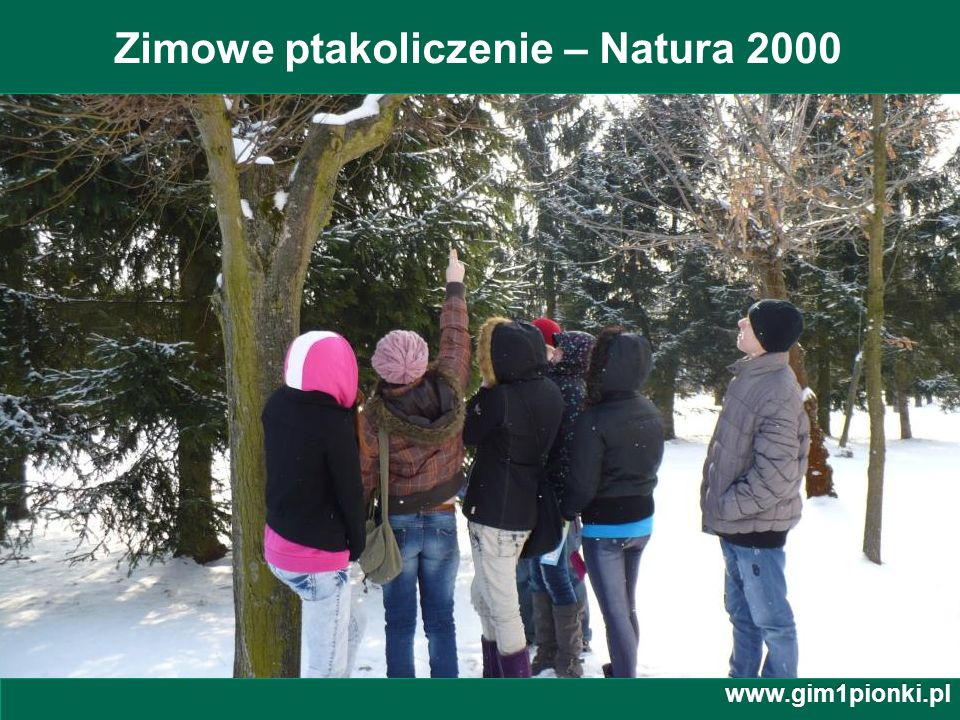 Zimowe ptakoliczenie – Natura 2000