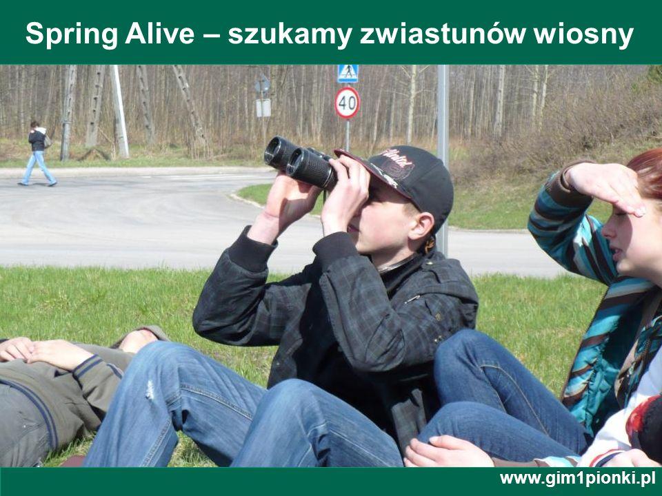 Spring Alive – szukamy zwiastunów wiosny