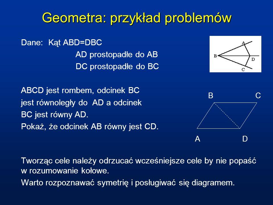 Geometra: przykład problemów