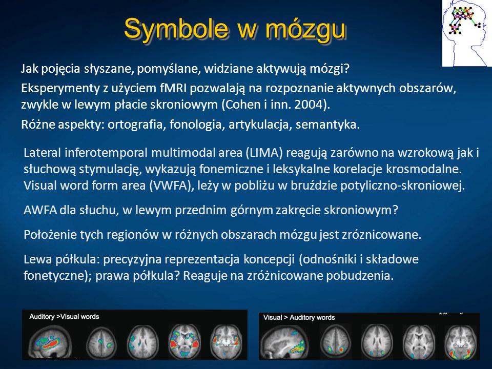 Symbole w mózgu Jak pojęcia słyszane, pomyślane, widziane aktywują mózgi