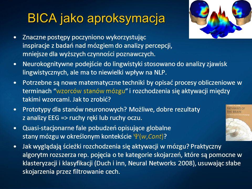 BICA jako aproksymacja