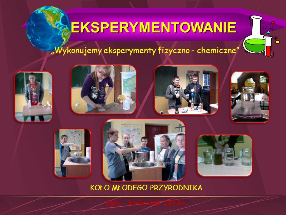 EKSPERYMENTOWANIE luty - kwiecień 2013r.