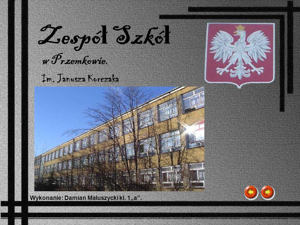 Zespół Szkół w Przemkowie. Im. Janusza Korczaka