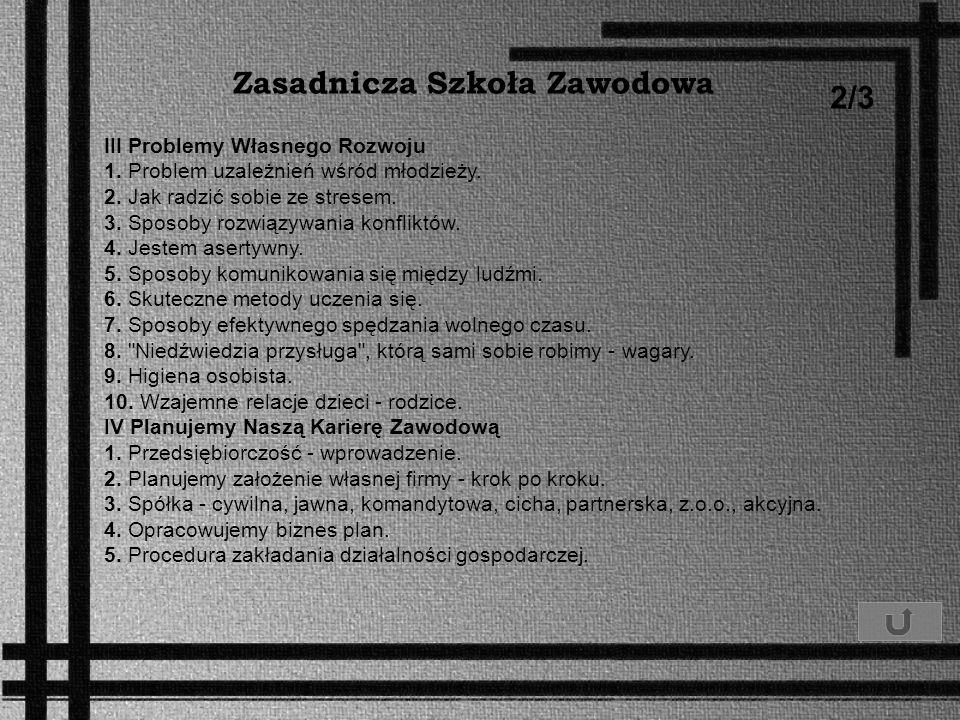 Zasadnicza Szkoła Zawodowa 2/3