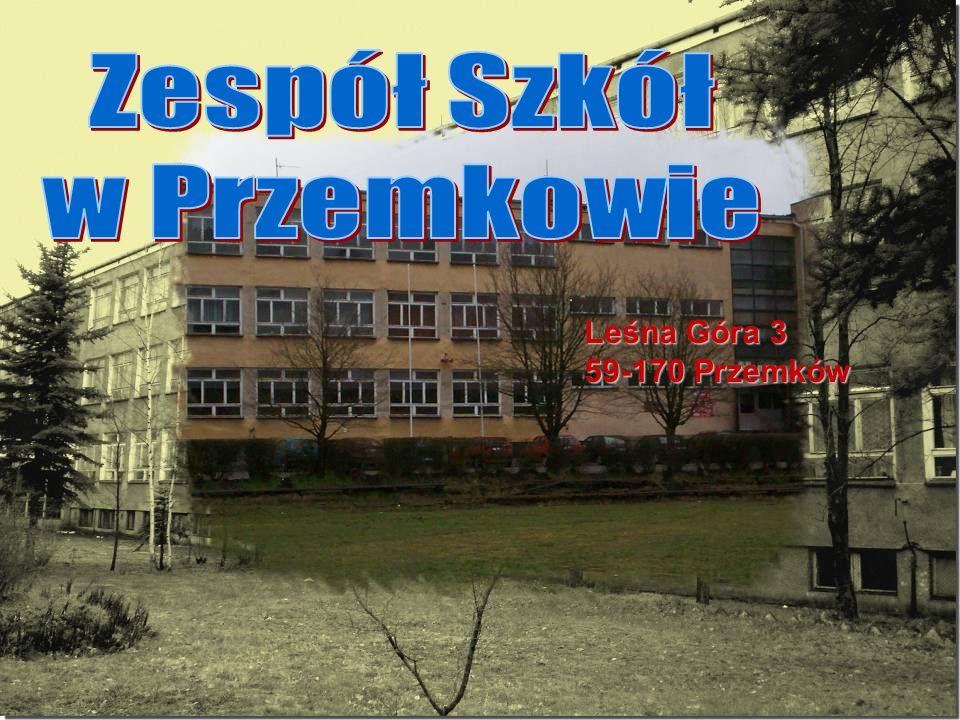 Zespół Szkół w Przemkowie Leśna Góra 3 59-170 Przemków