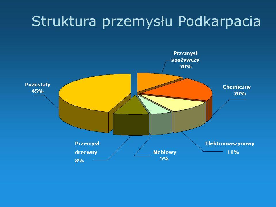 Struktura przemysłu Podkarpacia