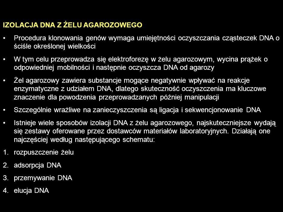 IZOLACJA DNA Z ŻELU AGAROZOWEGO