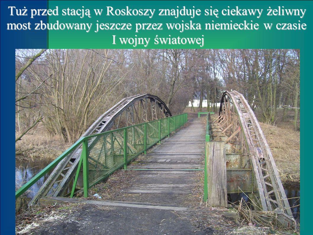 Tuż przed stacją w Roskoszy znajduje się ciekawy żeliwny most zbudowany jeszcze przez wojska niemieckie w czasie I wojny światowej