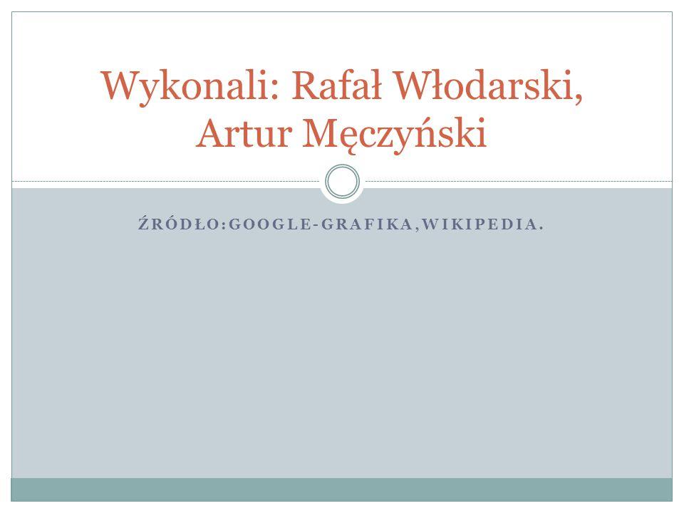 Wykonali: Rafał Włodarski, Artur Męczyński