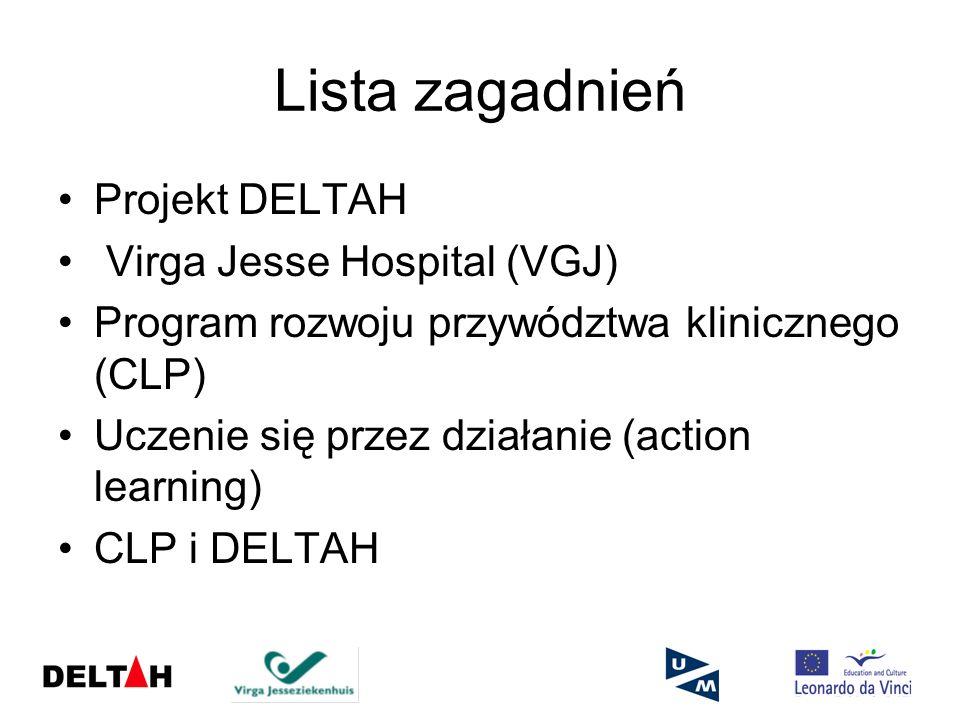 Lista zagadnień Projekt DELTAH Virga Jesse Hospital (VGJ)