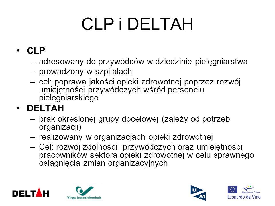 CLP i DELTAH CLP. adresowany do przywódców w dziedzinie pielęgniarstwa. prowadzony w szpitalach.