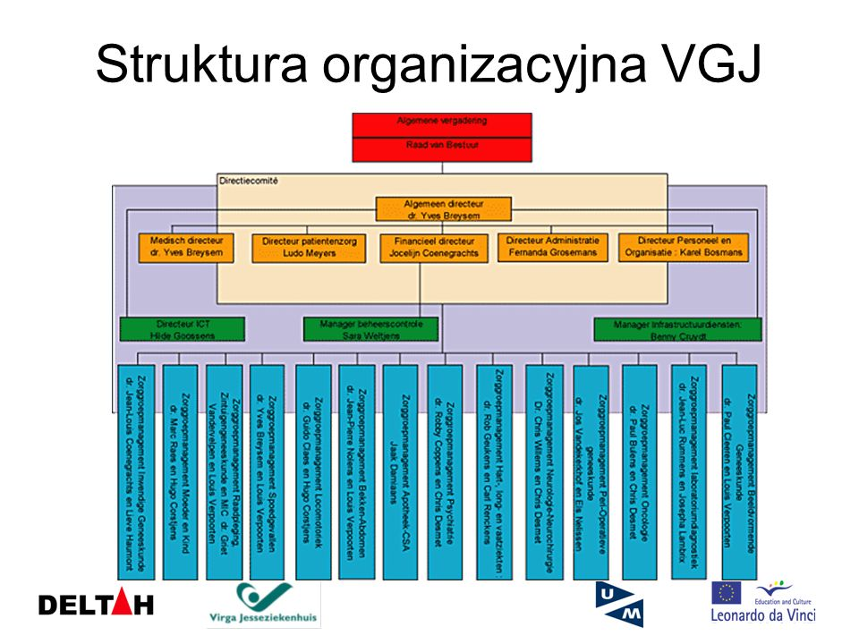 Struktura organizacyjna VGJ