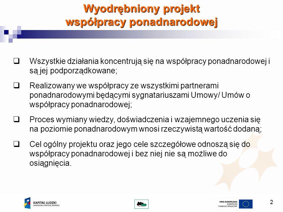 Wyodrębniony projekt współpracy ponadnarodowej