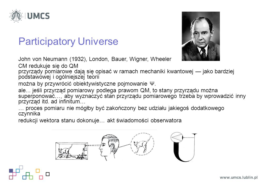 Participatory Universe