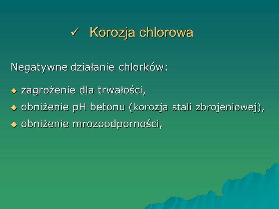 Korozja chlorowa Negatywne działanie chlorków: