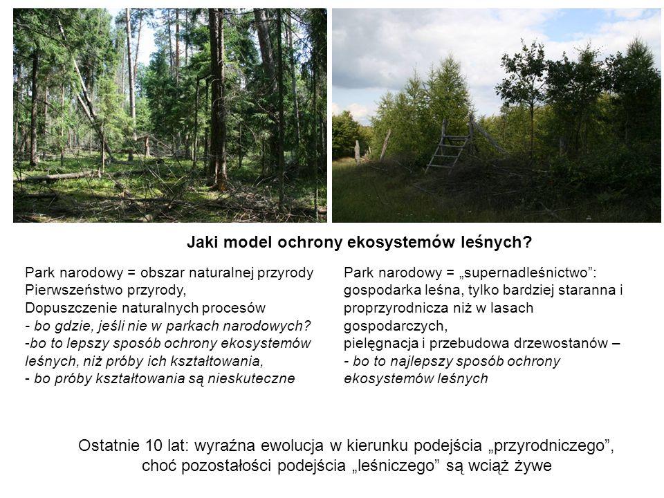 """choć pozostałości podejścia """"leśniczego są wciąż żywe"""