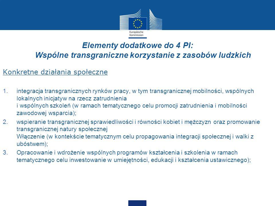Elementy dodatkowe do 4 PI: Wspólne transgraniczne korzystanie z zasobów ludzkich