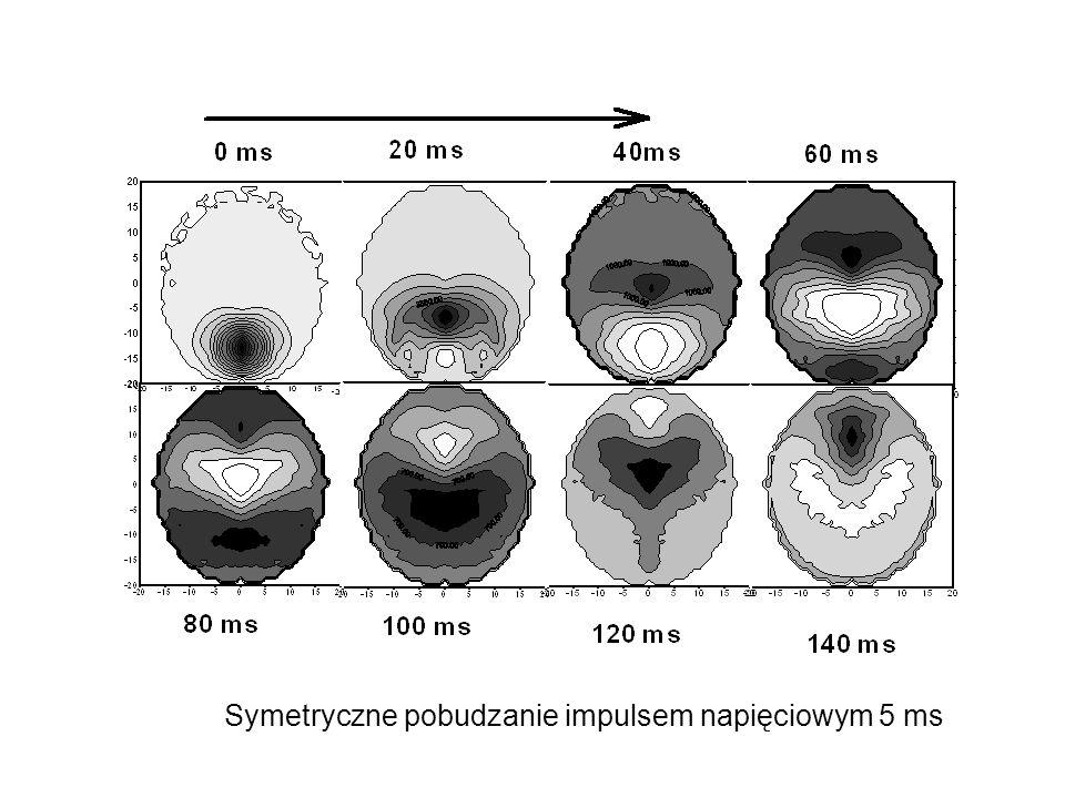 Symetryczne pobudzanie impulsem napięciowym 5 ms