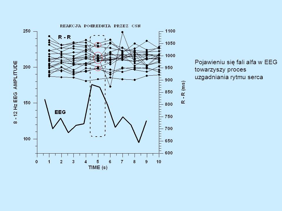 Pojawieniu się fali alfa w EEG