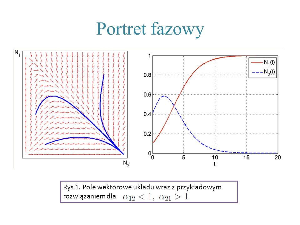 Portret fazowy Rys 1. Pole wektorowe układu wraz z przykładowym rozwiązaniem dla