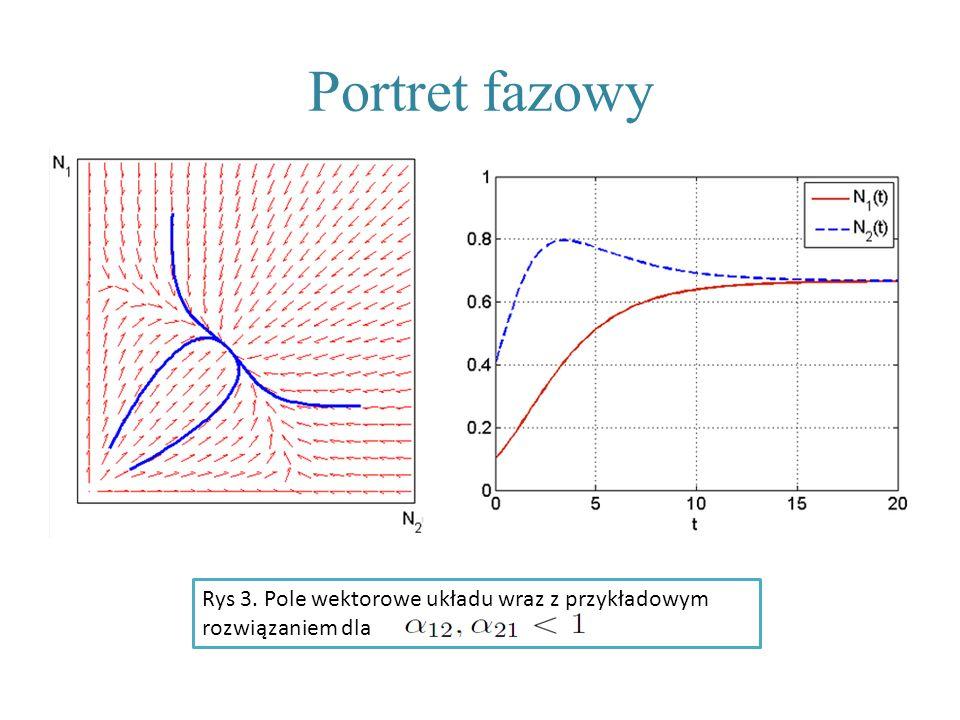 Portret fazowy Rys 3. Pole wektorowe układu wraz z przykładowym rozwiązaniem dla