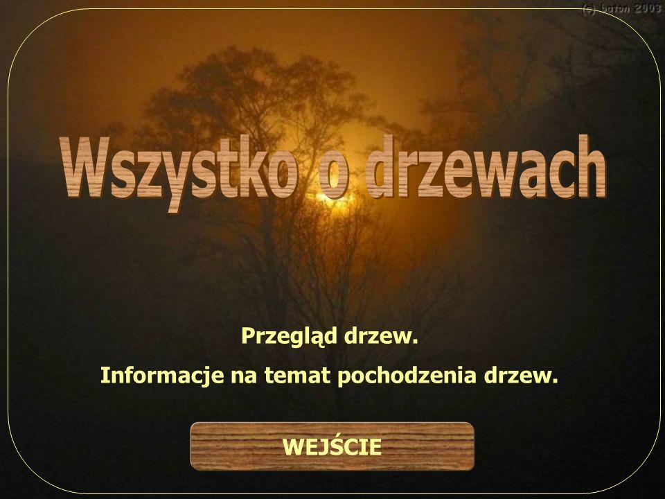Informacje na temat pochodzenia drzew.