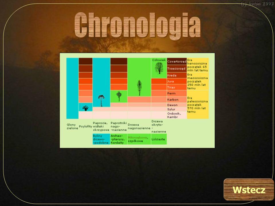 Chronologia Wstecz