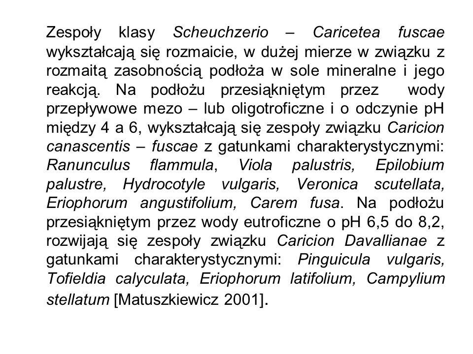 Zespoły klasy Scheuchzerio – Caricetea fuscae wykształcają się rozmaicie, w dużej mierze w związku z rozmaitą zasobnością podłoża w sole mineralne i jego reakcją.