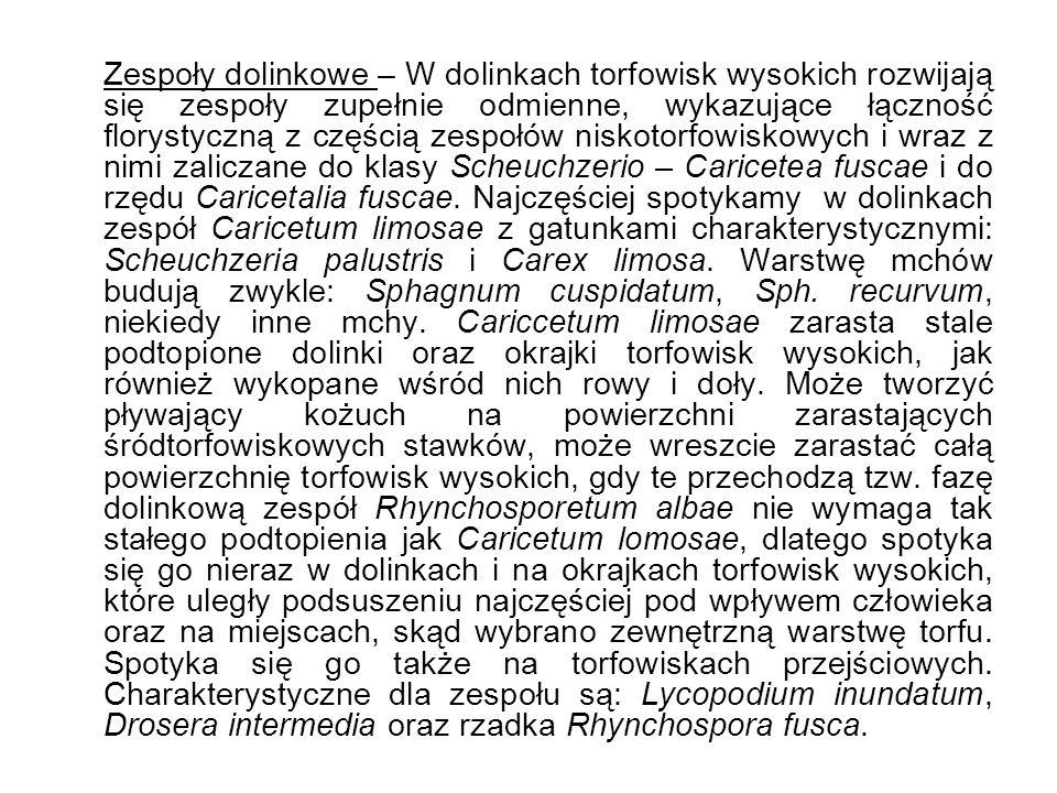 Zespoły dolinkowe – W dolinkach torfowisk wysokich rozwijają się zespoły zupełnie odmienne, wykazujące łączność florystyczną z częścią zespołów niskotorfowiskowych i wraz z nimi zaliczane do klasy Scheuchzerio – Caricetea fuscae i do rzędu Caricetalia fuscae.