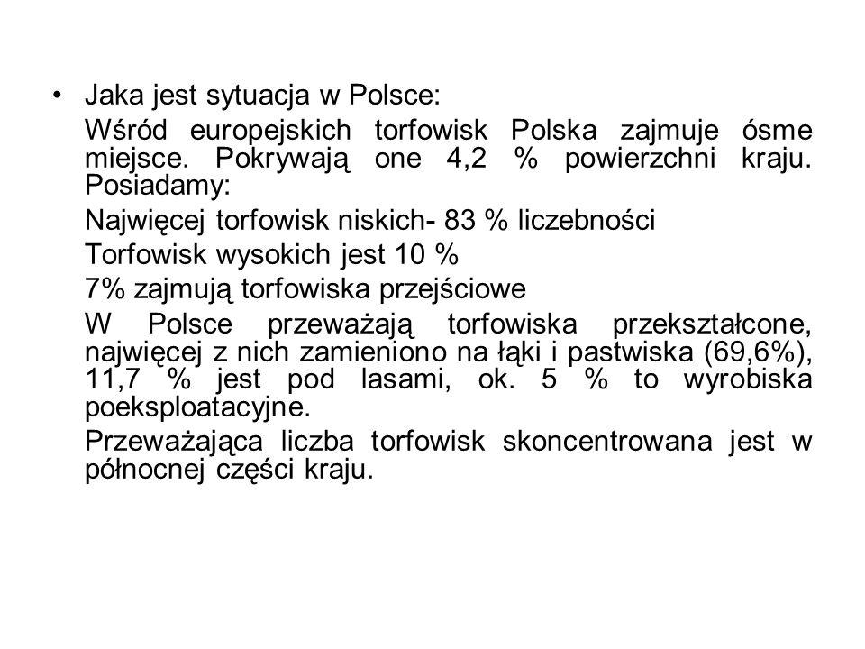 Jaka jest sytuacja w Polsce: