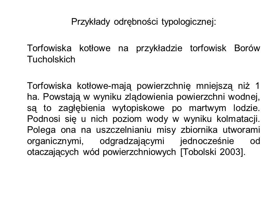 Przykłady odrębności typologicznej: