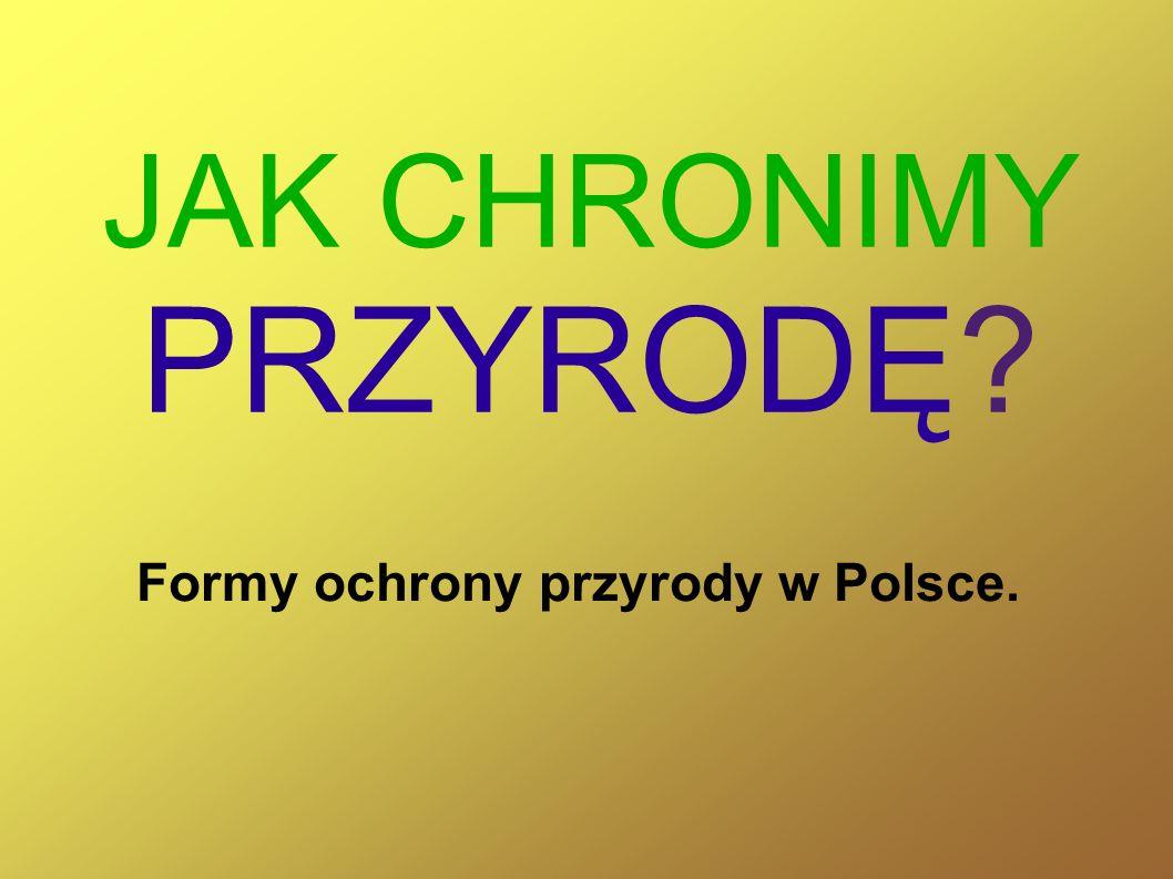 JAK CHRONIMY PRZYRODĘ Formy ochrony przyrody w Polsce.