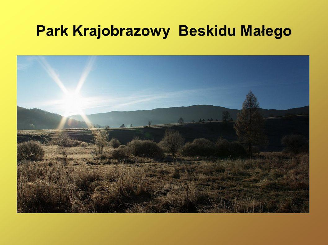 Park Krajobrazowy Beskidu Małego