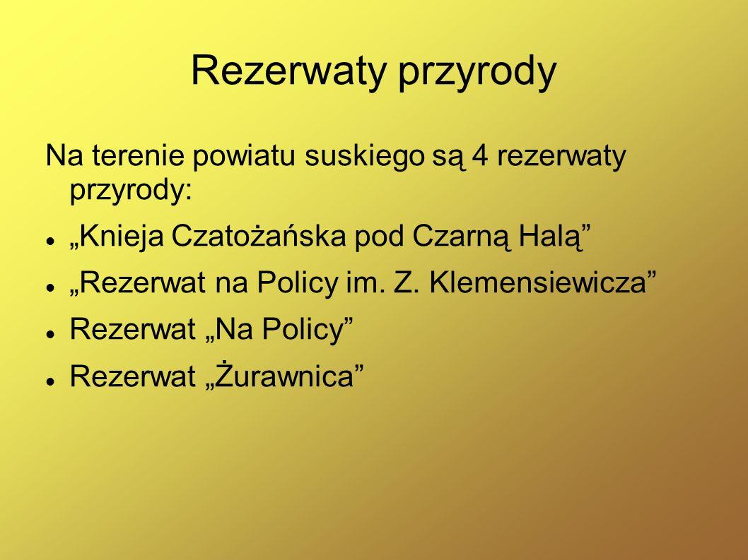 """Rezerwaty przyrody Na terenie powiatu suskiego są 4 rezerwaty przyrody: """"Knieja Czatożańska pod Czarną Halą"""